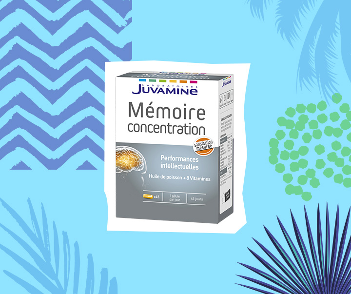 67112-MEMOIRE-CONCENTRATION
